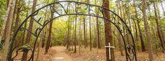African American cemetery at Drayton Hall   Charleston SC