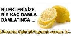 Kullanmış olduğunuz sıkılmış limonları çöpe atmayın! Lavabolarınızı limonla ovun. Tertemiz olacaktır. * Pirinç eşyalarınızın daha canlı görünmesini istiyorsanız limon ile ovun. * Mutfak tezgâhlarını temizlemek için 1 litre suya 1 limon suyu ve 1 tatlı kaşığı tuz atın. Bu karışım ile mutfağınız tertemiz!