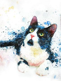 """I used to own a cat that looked just like this... love the splatter technique that is added    Wonderful cats from different authors """"Art"""" Walking through the galleries »Cinema-World [Forum]"""