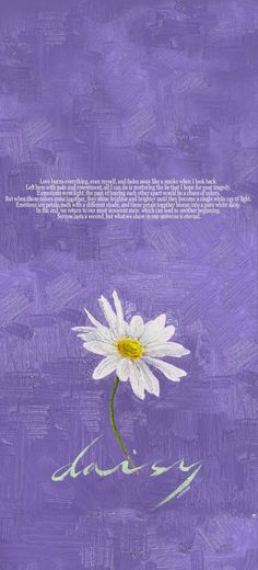 Pentagon - Daisy ( 데이지) wallpaper   Cr. @vvinjoo