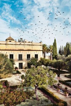 Travel Guide: Costa de la Luz, Spain: Jerez, a city of just over 200,000 people, is regarded as the economic hub of the region. It is famous for its sherry industry and is also a centre of equestrian sports and flamenco dancing. The Alcázar of Jerez de la Frontera (left), is a former 12th-century Moorish fortress that is now a public park. It also contains the city's only surviving mosque.