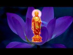 南無阿彌陀佛聖號 ~ ( 加長版 ) Namo Amitabha - YouTube Buddhism, Disney Characters, Fictional Characters, Aurora Sleeping Beauty, Disney Princess, Youtube, Positivity, Amor, Musica