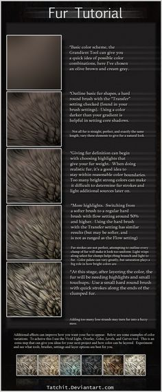 Fur Tutorial by *Tatchit on deviantART  nice painting technique, NOT program specific