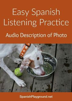 Easy Spanish listening practice with audio description of a photo of a dog… Spanish Practice, Spanish Lessons For Kids, Learning Spanish For Kids, Learn To Speak Spanish, Spanish Activities, Spanish Language Learning, Teaching Spanish, Listening Activities, Interactive Activities