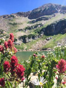 Hiking Trails near Little Cottonwood Canyon Hiking Trail Maps, Hiking Trails, East Ridge, Cottonwood Canyon, Salt Lake City, Utah, Castle, Photoshoot, Photo Shoot