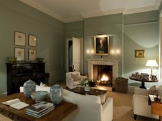 Farrow and Ball Blue Grey~Drawing Room traditional-living-room