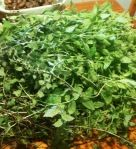 tips and tricks on what to do with leftover fresh herbs