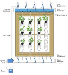 Vertical garden using plastic bottles  http://www.energybulletin.net/node/51958