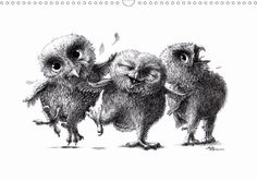 owls & friends - CALVENDO