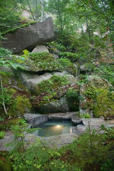 A Rock Garden Design Online - Bing Images Garden Design Online, Rock Garden Design, Swimming Pool Pond, Natural Swimming Pools, Natural Pond, Au Natural, Dream Pools, Beautiful Pools, Unique Gardens