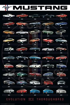 Any Ford lovers out there? The evolution of the Mustang. Ford Mustang Gt, Mustang Cars, Mustang 1964, Blue Mustang, Mustang Bullitt, Auto Poster, Car Posters, Poster Poster, Car Ford