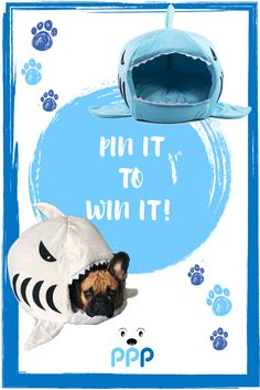 Puff Puff Paws Pin it to Win it Giveaway! We're giving away a Shark Bed to a lucky winner! Click on the image to enter :) Contest ends May 1. Good luck! #puffwithus