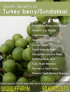 Health Benefits of Turkey Berry / Sundakkai