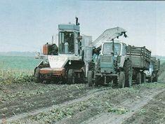 Tractors, Old School, Nostalgia, Outdoor, Vintage, Agriculture, Outdoors, Outdoor Games, Vintage Comics