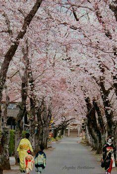 Japón me enamora, Tokyo