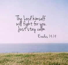 Bible Verses About Faith: The lord him self will fight for you just stay aclm. Exodus 14:14