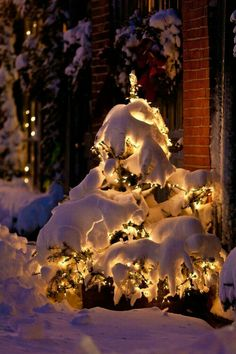 17 ideas for winter landscape photography wonderland Winter Szenen, Winter Love, Winter Magic, Christmas Scenes, Christmas Mood, Christmas Lights, White Christmas Snow, Merry Christmas, Magical Christmas