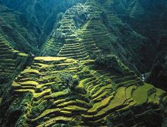 Stairways to Heaven, Luzon, Philipines
