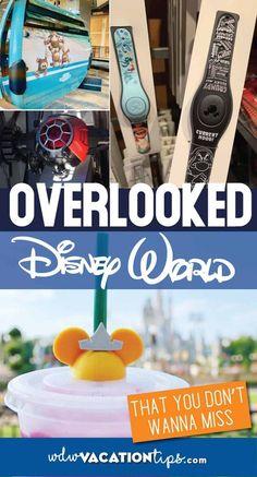 Often Disregarded Disney Experiences • WDW Vacation Tips