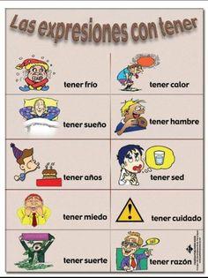 El verbo Tener