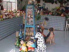 Resultado de imagen para CASCADAS DE PANGUA COTOPAXI Dogs, Animals, Waterfalls, Animales, Animaux, Doggies, Animal, Animais, Dieren