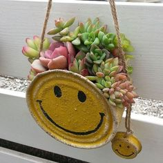 Succulents In Containers, Cacti And Succulents, Planting Succulents, Cactus Plants, Dish Garden, Garden Art, Small Garden Fairies, Tin Can Crafts, Tin Art