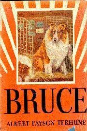 Bruce, by Albert Payson Terhune