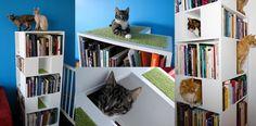 CatCase by urbancatdesign #cat #design #home