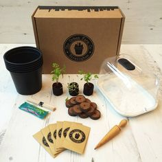 Tea Time Collection Seed Kit - update your garden Vegetable Packaging, Seed Storage, Herb Seeds, Terrarium Diy, Diy Greenhouse, Save The Bees, Urban Farming, Garden Gifts, Grow Your Own