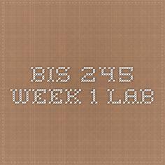 BIS 245 Week 1 Lab