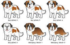 desenho cachorro são bernardo - Pesquisa Google