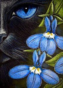 Detail Image for art BLACK CAT BEHIND THE LOBELIA FLOWERS - EBSQ SHOW