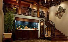 Custom Aquarium Stands Dallas