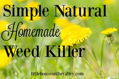 simple natural weed killer