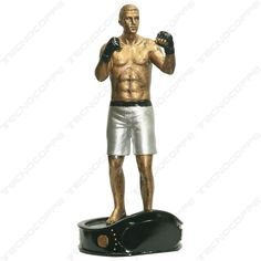Trofeo MMA Mixed Martial Arts GRATIS targhetta incisa Premiazioni Coppe Trofei