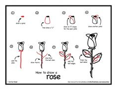 Download how to draw a rose step by step