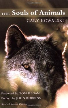 Have The Souls of Animals by Gary Kowalski http://www.amazon.com/dp/1577315901/ref=cm_sw_r_pi_dp_fix6ub0BC0RMX