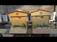 How to Split A Beehive and Prevent Swarming - YouTube