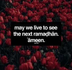 Ameen ya rab Ramadan is gone far away may Allah bless us all to walk on his path which he's favored upon rewards, blessings and his love all 12 months. Important Quotes, Islamic Studies, Allah Quotes, Quran Verses, Islamic Pictures, Prophet Muhammad, Holy Quran, Alhamdulillah, Deen