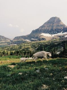 The Western States with Kevin Russ | VSCO