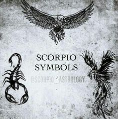 Scorpio symbols, eagle, scorpion and phoenix. The only sign with 3 symbols.
