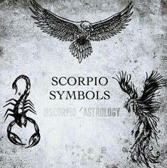 Scorpio symbols, eagle, scorpion and phoenix. The only sign with 3 symbols.