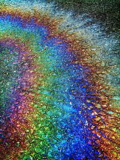 rainbow puddle. oil spill. water. parking lot. Who would have thought pollution could be beautiful