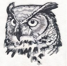 Machine Embroidery Designs at Embroidery Library! Owl Tattoo Drawings, Bird Drawings, Art Drawings Sketches, Colorful Drawings, Animal Drawings, Elf Owl, Owl Facts, Black And White Art Drawing, Owl Sketch