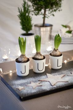 A lovely Christmas decoration! #jul #christmas #danish  Photo by Hemlängtan