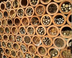 Insect hotel.  Wow.  simple and stylish Bug hotel.  Insect home.