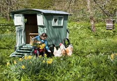 Adorable little gypsy caravan for a couple of hens. I think I'm going to need a little gypsy caravan for a couple of silkies... :)