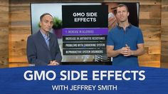 GMO Side Effects with Jeffrey Smith - ✅WATCH VIDEO👉 http://alternativecancer.solutions/gmo-side-effects-with-jeffrey-smith/     More information on genetically modified organisms and GMO side effects here: Genetically modified foods are foods with altered DNA. Its genetic material has been combined with other forms of life, including other plant forms, insecticides, pesticides, bacteria and viruses. In this video, I...