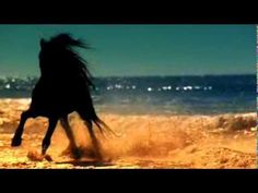 Sahara Essence (Música árabe instrumental)