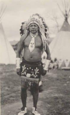 Fish Wolf Robe - Blackfoot (Siksika) - 1919